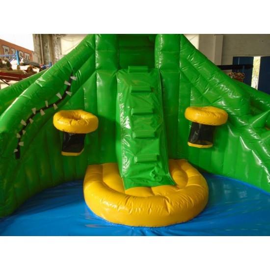 Kids Inflatable Water Slide